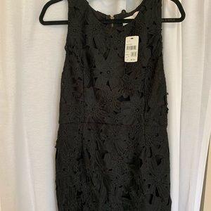 ASTR Lace Dress NWT